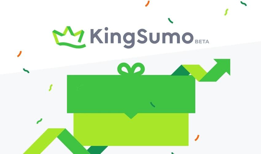 kingsumo web pro lifetime deal appsumo briefcase